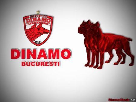 dinamo_bucuresti_0694242