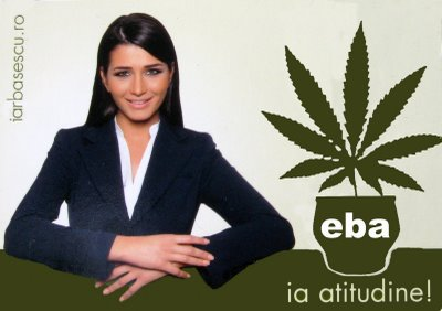 EBA marijuana Marius Mina