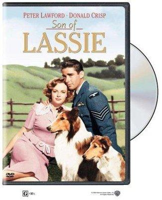 Lassie Laddie cinemagia.ro